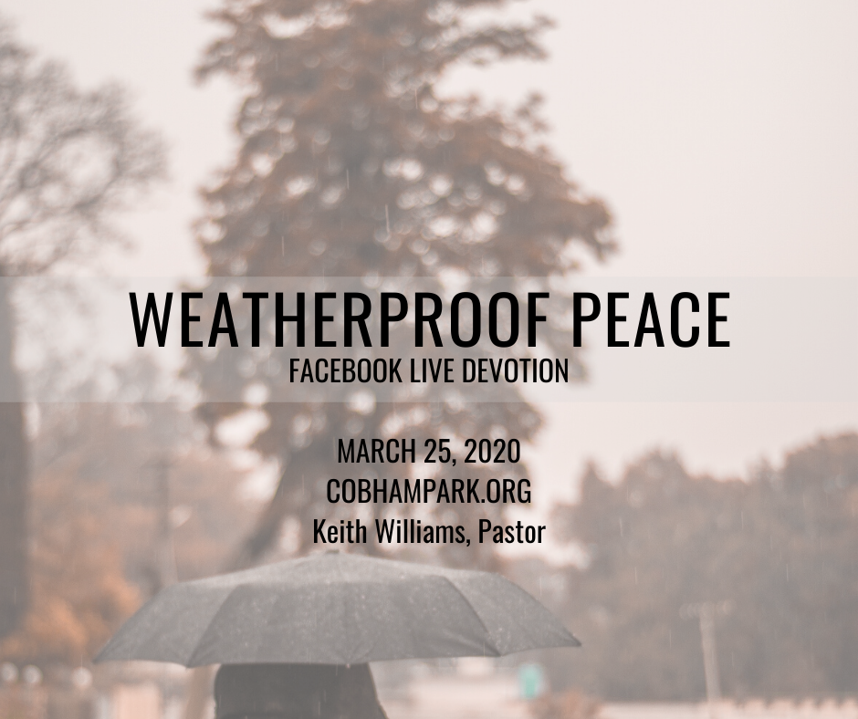 Weatherproof Peace — March 25 2020 Devotion – Cobham Park ...March For Peace 2020